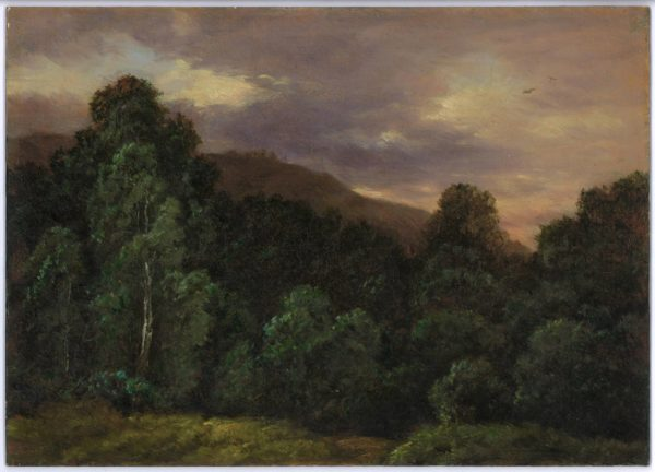 Carl Gustav Carus, The Edge of a Forest at Sunset