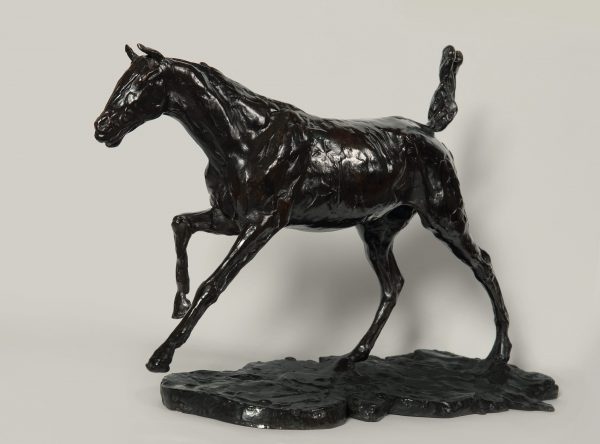 Horse Galloping on Right Foot