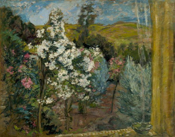 Le jardin vu de la fenêtre